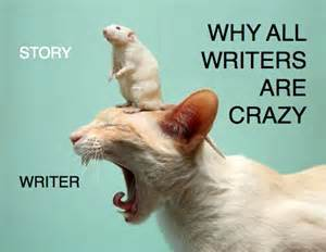 CrazyWriter